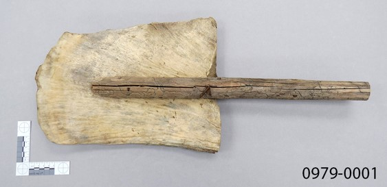 shovel made of moose antler with wooden handle