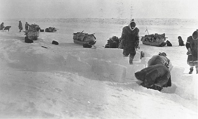 Inuit people building a snow house with loaded sleds in the background