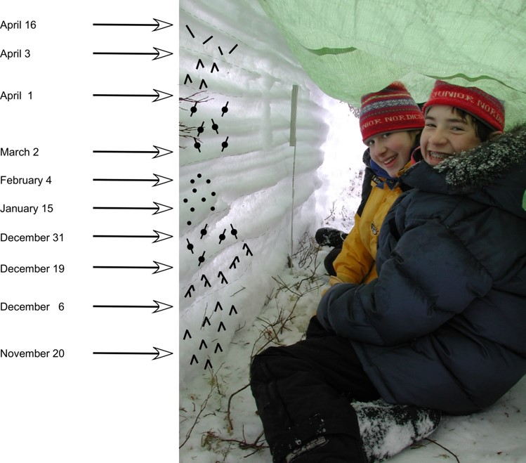 Two kids sit in front of a thin wall of snow illustrating layers deposited during discrete snow events