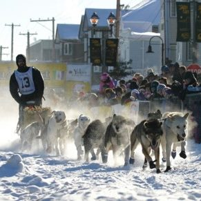 person on dog sled pulled by 10 or more dogs