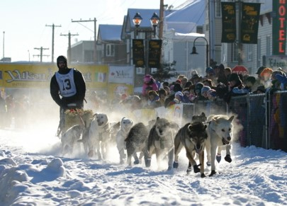 Dog musher wearing a race big leaves the starting chute of the Yukon Quest dog sled race.