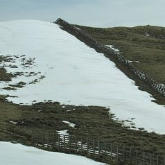 fence with snow drift on left side. Snow has melted from other areas.