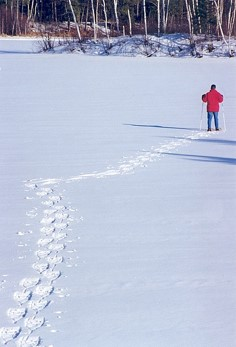 Person wearing snowshoes makes tracks in fresh snow