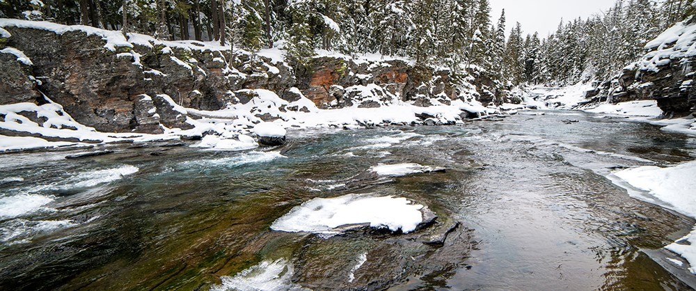 river with snowy, conifer-covered banks