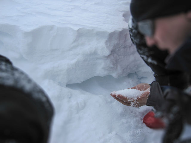 Person holding coarse sugary snow taken from the bottom of the snowpack