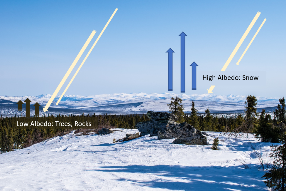 Snowy mountain view with arrows showing albedo of dark and light surfaces