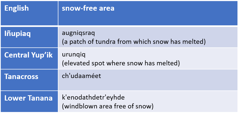 """Table of Alaska Native language words for """"snow-free area"""""""