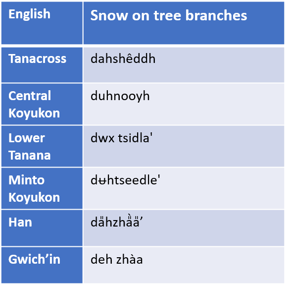 Table of terms for snow on trees in selected AK Native languages